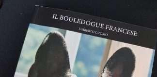 Il Bouledogue Francese di Umberto Cuomo