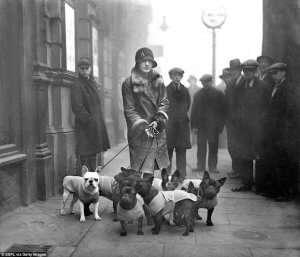 Una giovane donna con i suoi bouledogue francese