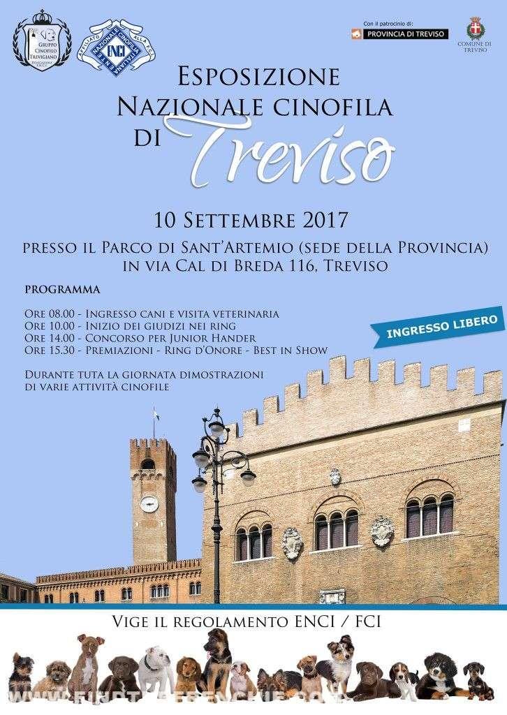 Esposizione Nazionale Cinofilia Treviso 2017
