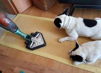 scopa elettrica rowenta aspira peli cani