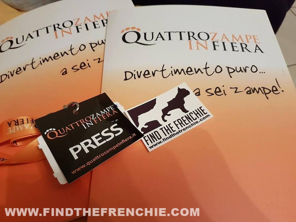 Quattro zampe in fiera Padova Press Badge Find the Frenchie