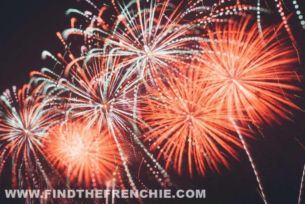 Botti di Capodanno e Bulldog Francese - Fuochi di Artificio