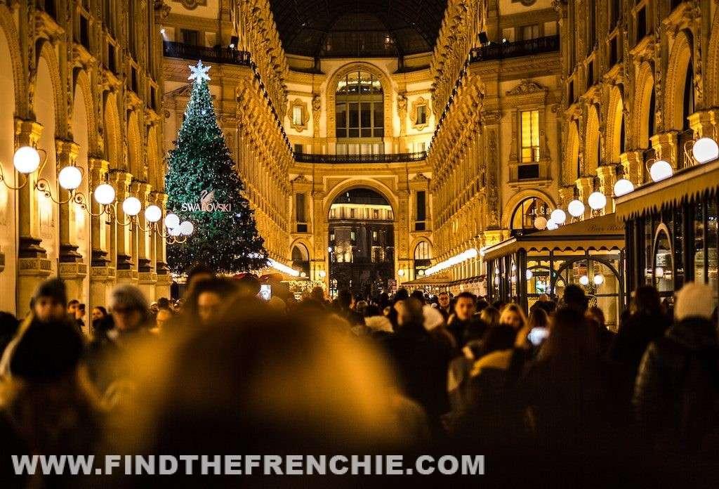 Botti di Capodanno e Bulldog Francese - GallerVittorio Emanuale Milano
