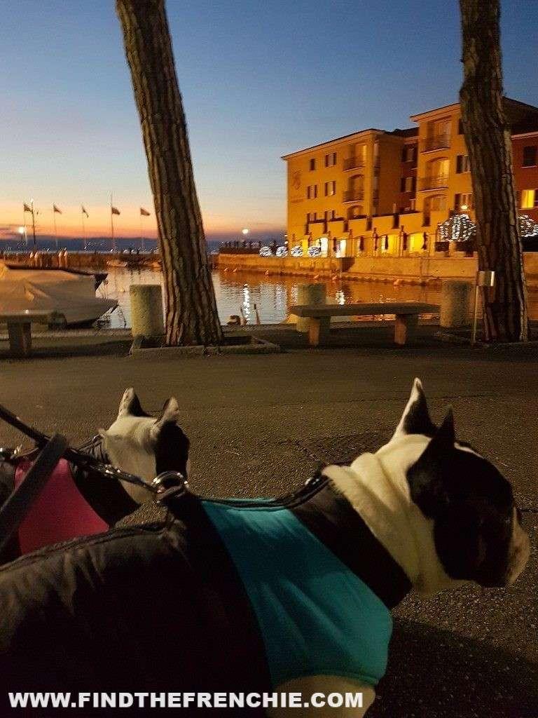Dante e Mia al porto di Sirmione