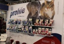 prolife pet food intervista Find the Frenchie