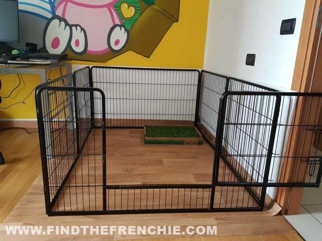Recinto per cani da interno la nostra guida e tanti consigli - Recinto mobile per cani ...