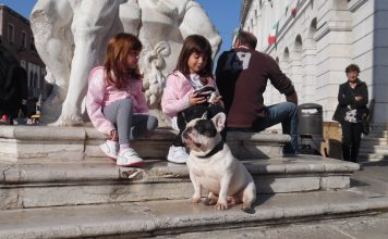 Il bouledogue francese Spike insieme a Giulia e Annalisa