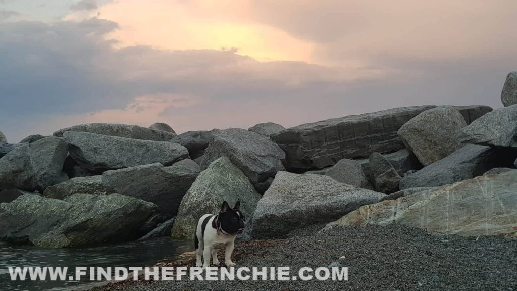 Tramonto in spiaggia per Escalofrìo Capitan Futuro