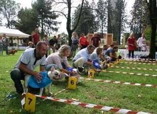 Giochi della Solidarietà - Olimpiadi e Solidarietà dei Bulldog e Bouledogue. In 6 posizione Mia!