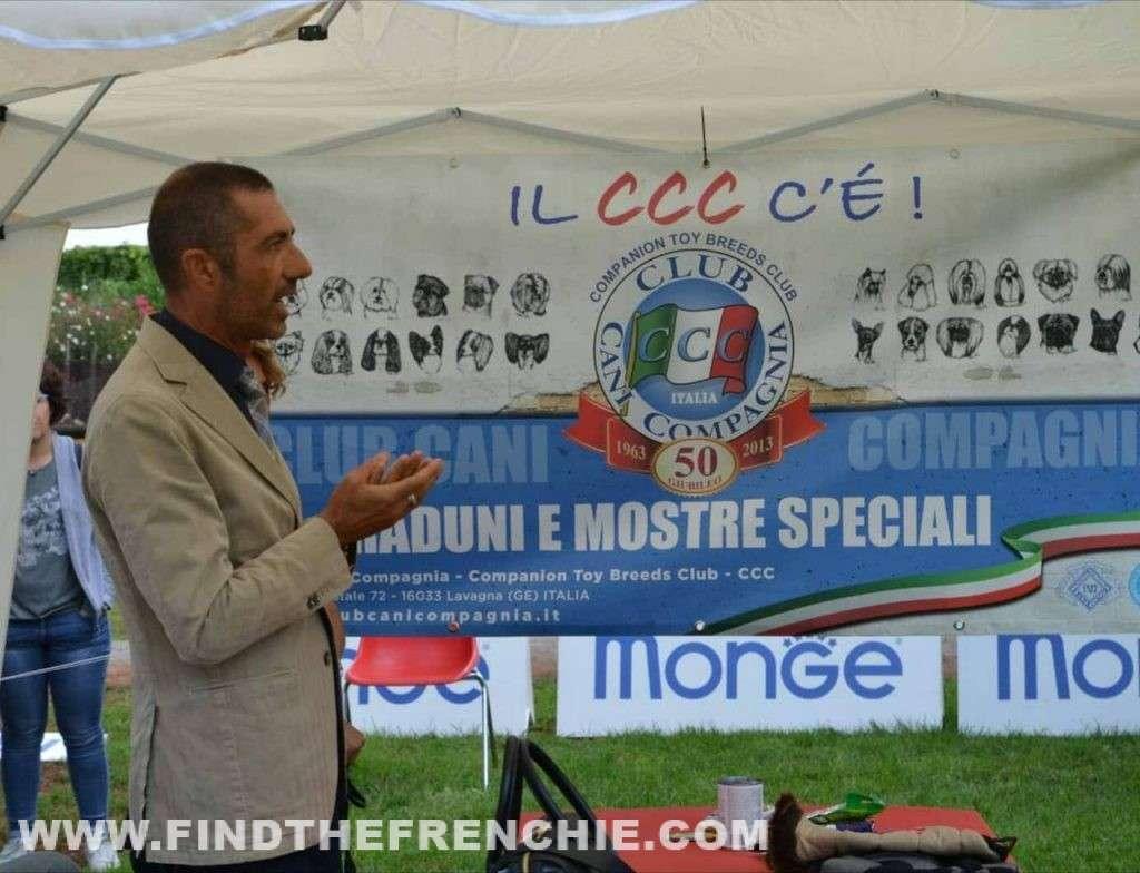 Tavola Rotonda con Prof. Alberto Vergara