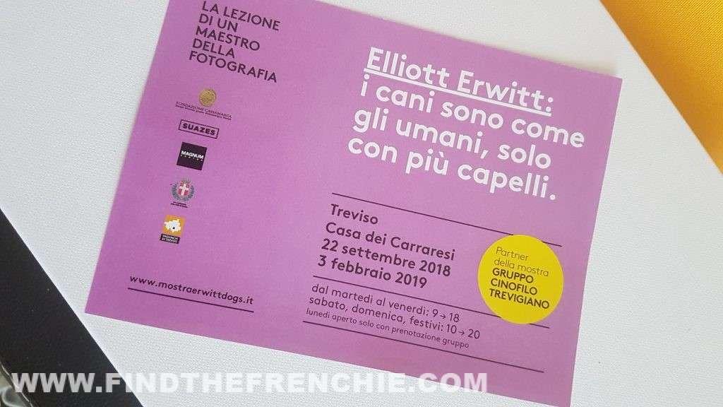 Mostra Elliott Erwitt: 80 foto sui cani a Treviso