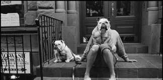 Mostra Elliott Erwitt: 80 foto sui cani a Treviso.La nostra recensione.