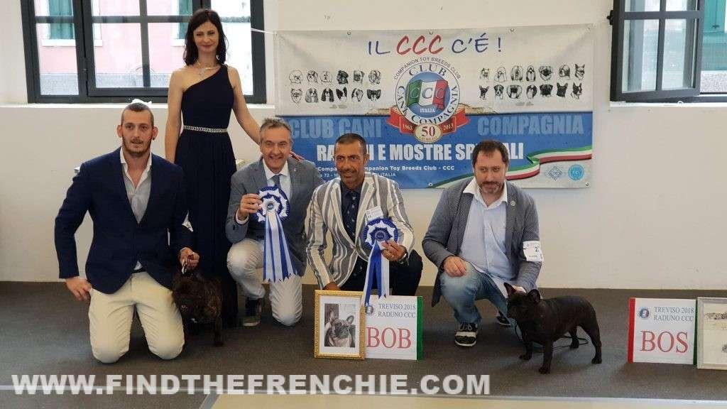 Rado De Valoisse in expo a Treviso