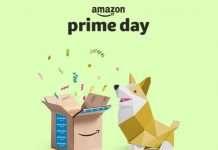 Amazon Prime Day 2019 offerte cane