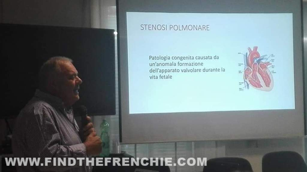 Il Professor Claudio Bussadori