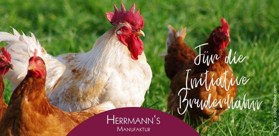 Herrmann's cibo biologico per cani sensibili