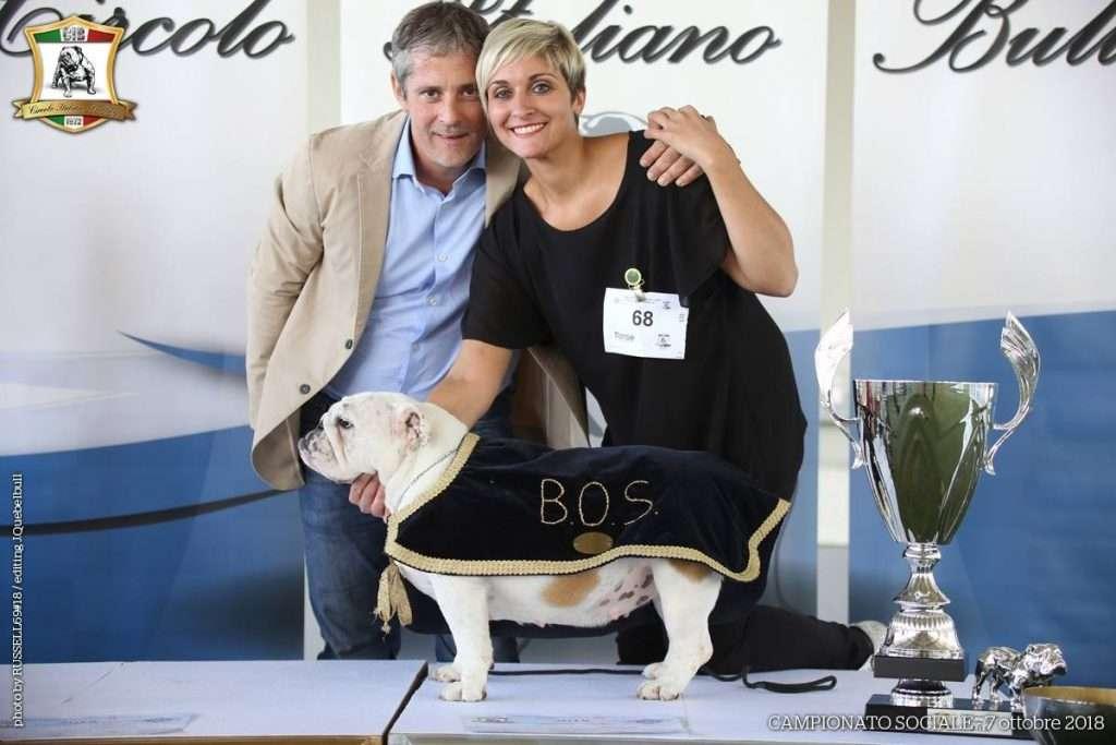 Campinato Sociale 2018 - BOS - BEXBULL EVANGELINE (Zizioli Bruno)