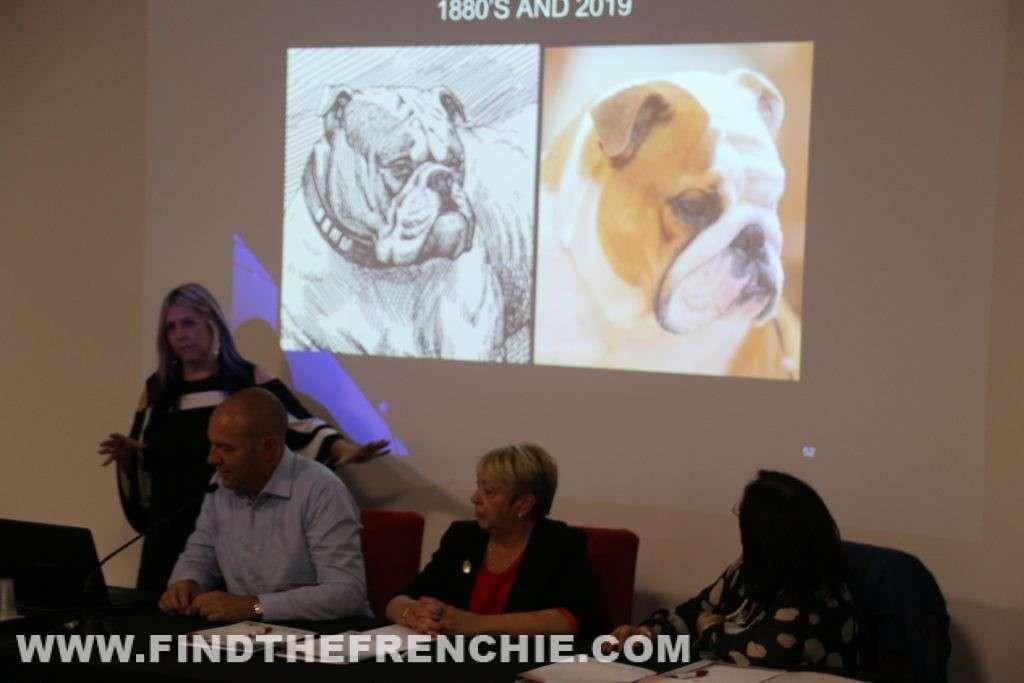Seminario Bulldog 2019 - 1880 and 2019