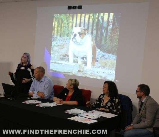 Seminario Bulldog Inglese 2019 Modena