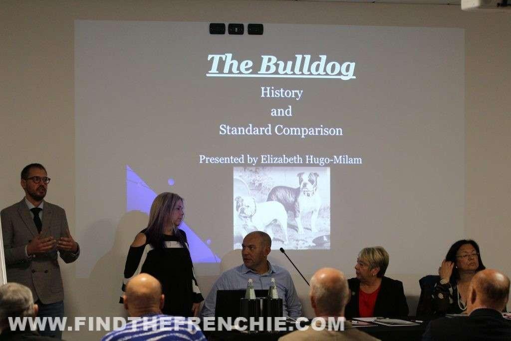 The Bulldog History and Standard Comparison Mrs Elizabeth Hugo Milan