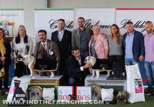 Vincitori Campionato Sociale Circolo Italiano Bulldog Modena 2019