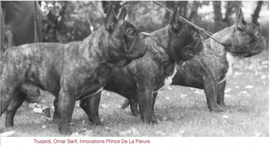 Trusardi Omar Sarif Innovations Prince De La Parure