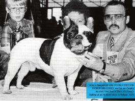Foto di Archivio Victor Raamsdonk Allevamento De La Parure- Olanda 1978 Best in Show