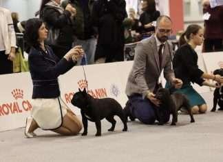 Esposizione Internazionale di Padova 2020 - Boris De Valoisse e Rita Toth