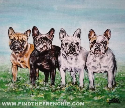 Ritratti Bouledogue Matty, Minilla, Pollon e Crash Acrilico su tela