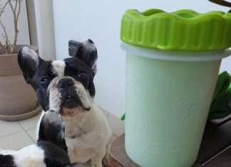 Lavazampe per cani bouledogue francese