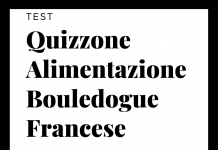 Il Quizzone Alimentazione Bouledogue Francese - Find the Frenchie