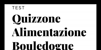 Il Quizzone Alimentazione Bouledogue Francese - Find the Frenchie