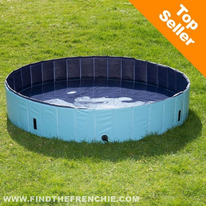 Piscina per cani Dog Pool Keep Cool