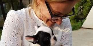 Mia da cucciola con l'umana