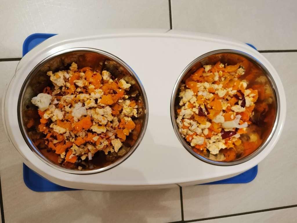 Cucina casalinga per cani. Razione al pollo e verdure
